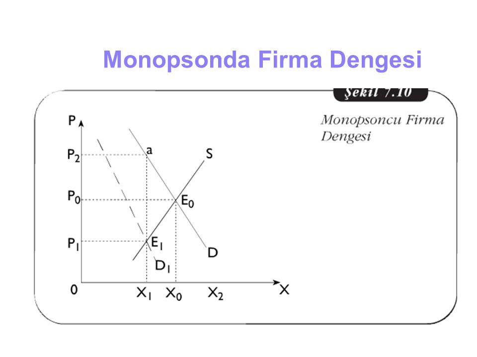 Monopsonda Firma Dengesi