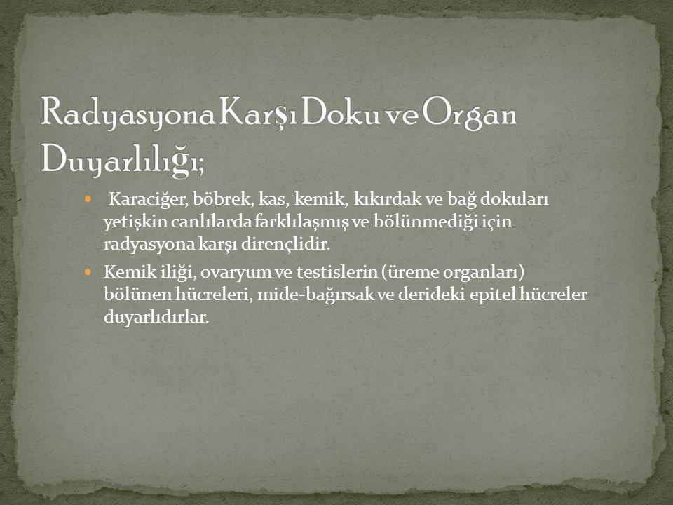 Radyasyona Karşı Doku ve Organ Duyarlılığı;