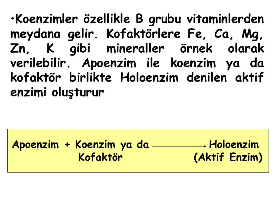 Apoenzim + Koenzim ya da Holoenzim Kofaktör (Aktif Enzim)