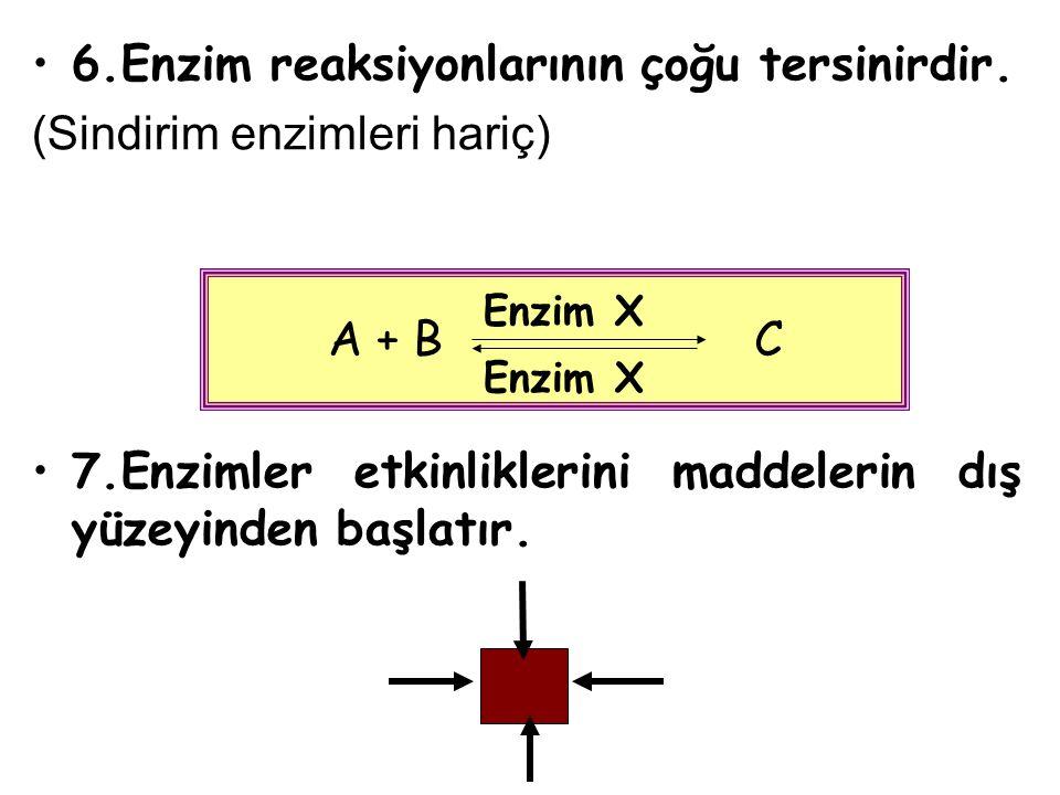 6.Enzim reaksiyonlarının çoğu tersinirdir. (Sindirim enzimleri hariç)