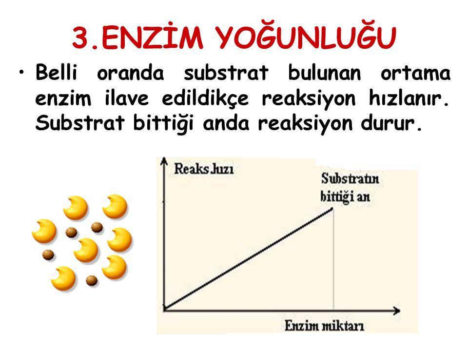 3.ENZİM YOĞUNLUĞU Belli oranda substrat bulunan ortama enzim ilave edildikçe reaksiyon hızlanır.