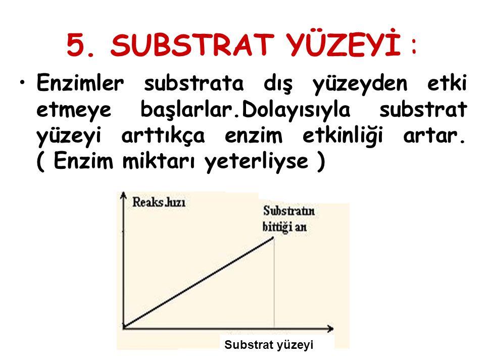 5. SUBSTRAT YÜZEYİ :