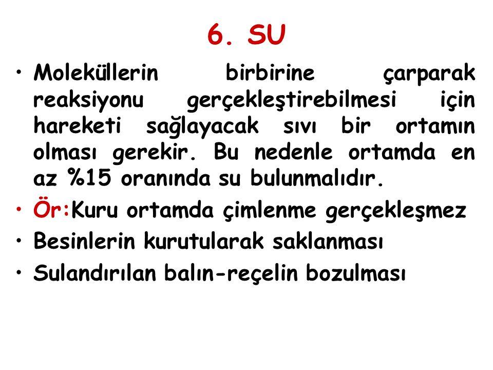 6. SU
