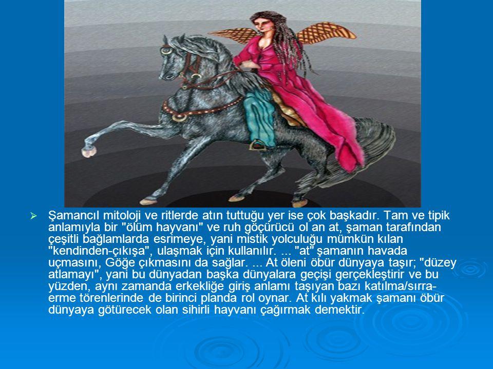 Şamancıl mitoloji ve ritlerde atın tuttuğu yer ise çok başkadır