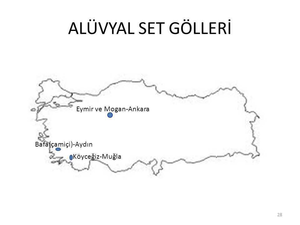 ALÜVYAL SET GÖLLERİ Eymir ve Mogan-Ankara Bafa(çamiçi)-Aydın