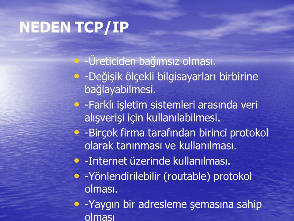 NEDEN TCP/IP -Üreticiden bağımsız olması.