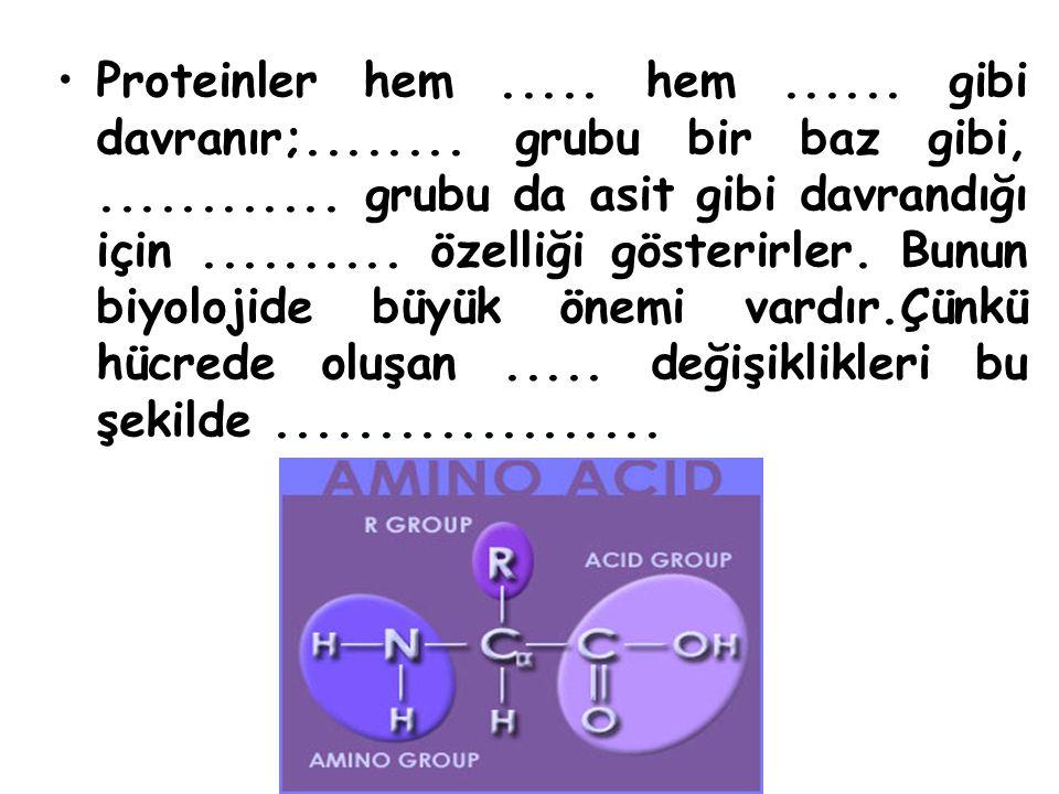 Proteinler hem. hem. gibi davranır;. grubu bir baz gibi,