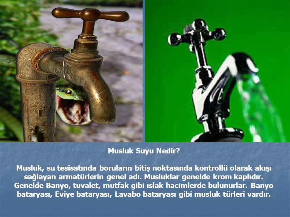 Musluk Suyu Nedir
