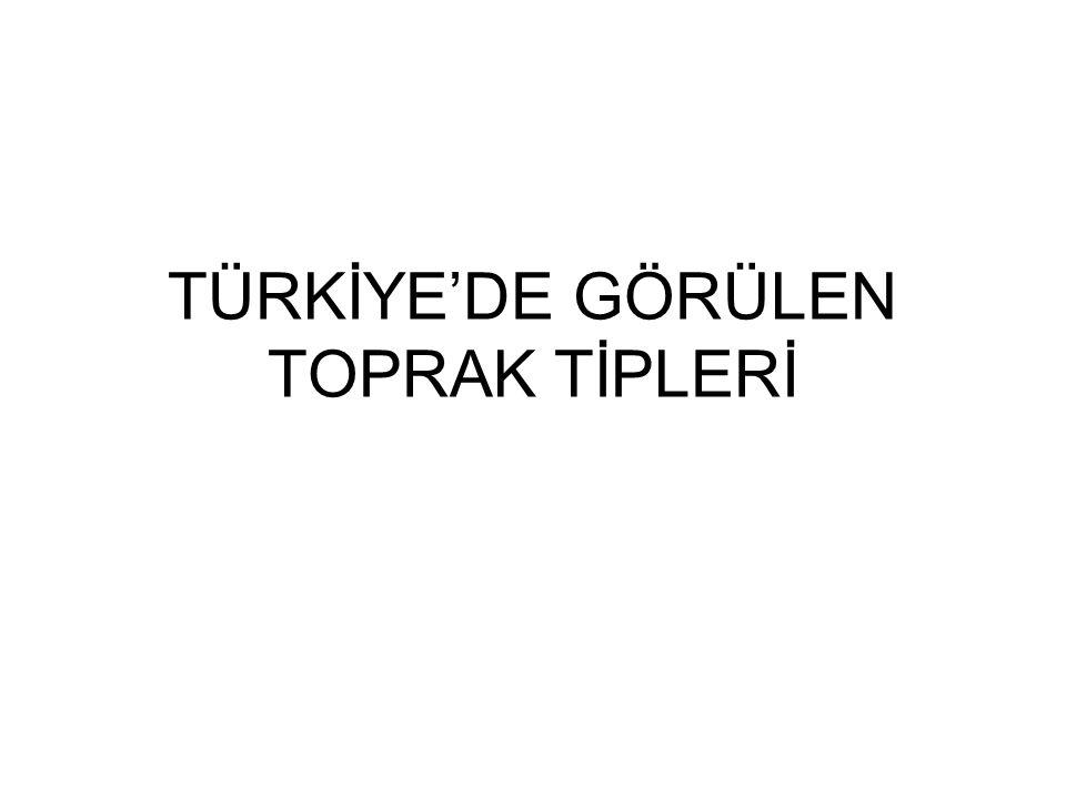 TÜRKİYE'DE GÖRÜLEN TOPRAK TİPLERİ