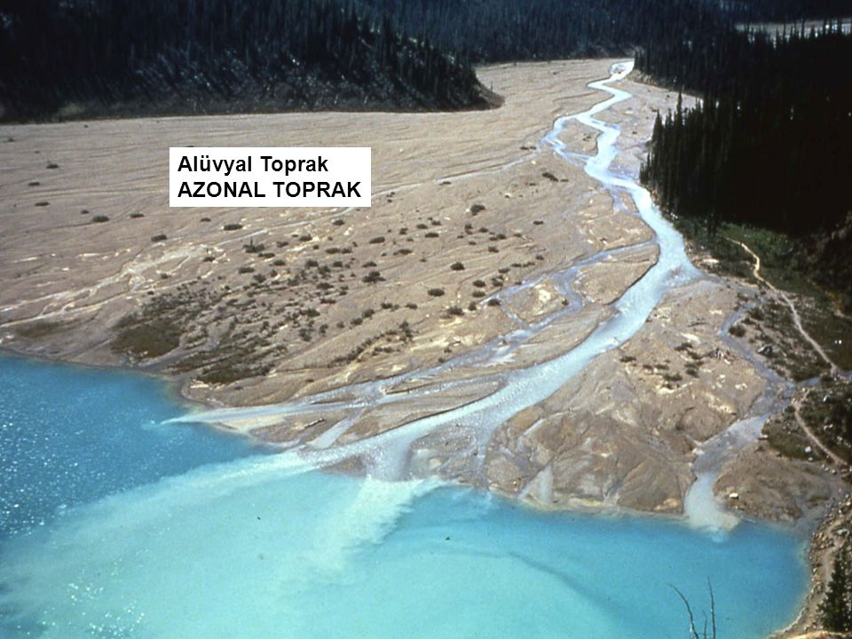 Alüvyal Toprak AZONAL TOPRAK