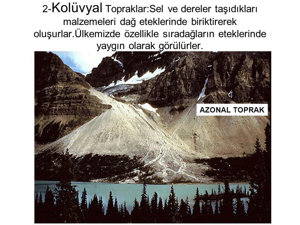 2-Kolüvyal Topraklar:Sel ve dereler taşıdıkları malzemeleri dağ eteklerinde biriktirerek oluşurlar.Ülkemizde özellikle sıradağların eteklerinde yaygın olarak görülürler.