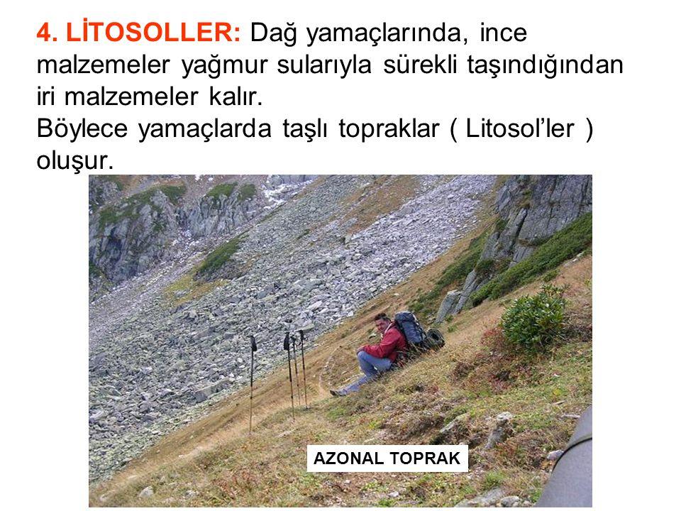 4. LİTOSOLLER: Dağ yamaçlarında, ince malzemeler yağmur sularıyla sürekli taşındığından iri malzemeler kalır. Böylece yamaçlarda taşlı topraklar ( Litosol'ler ) oluşur.