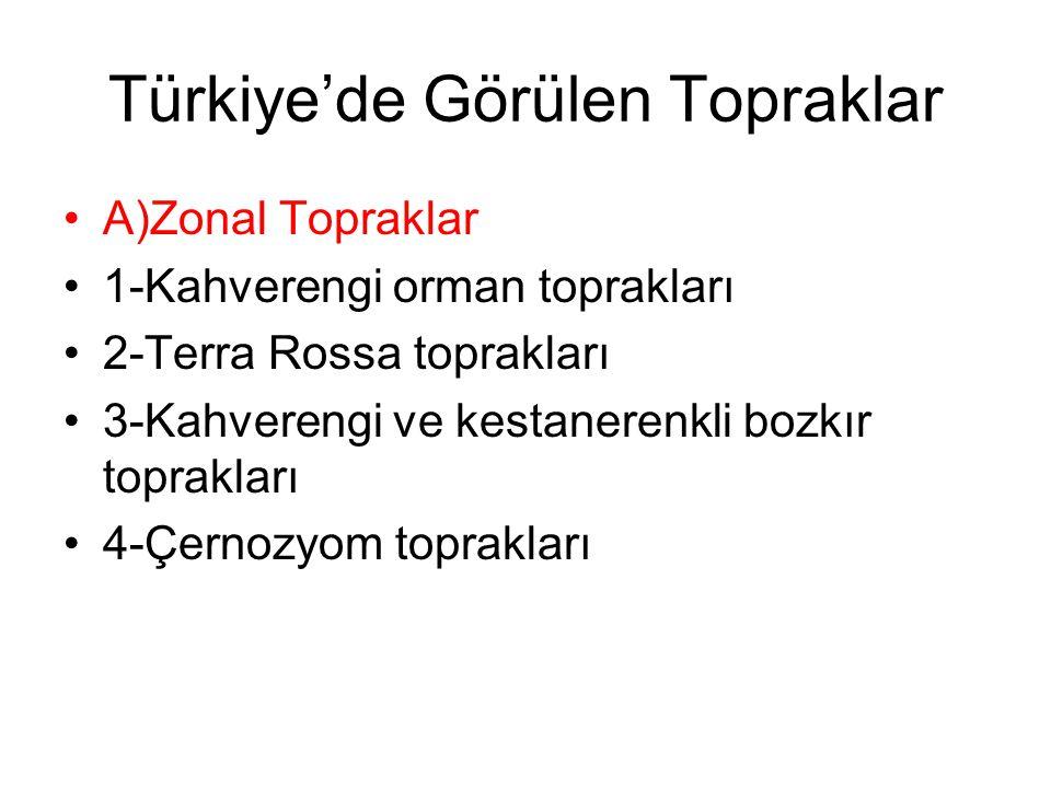 Türkiye'de Görülen Topraklar