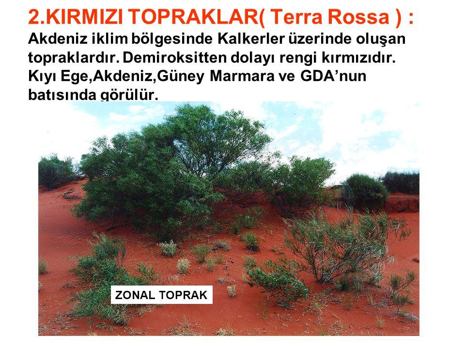 2.KIRMIZI TOPRAKLAR( Terra Rossa ) : Akdeniz iklim bölgesinde Kalkerler üzerinde oluşan topraklardır. Demiroksitten dolayı rengi kırmızıdır. Kıyı Ege,Akdeniz,Güney Marmara ve GDA'nun batısında görülür.