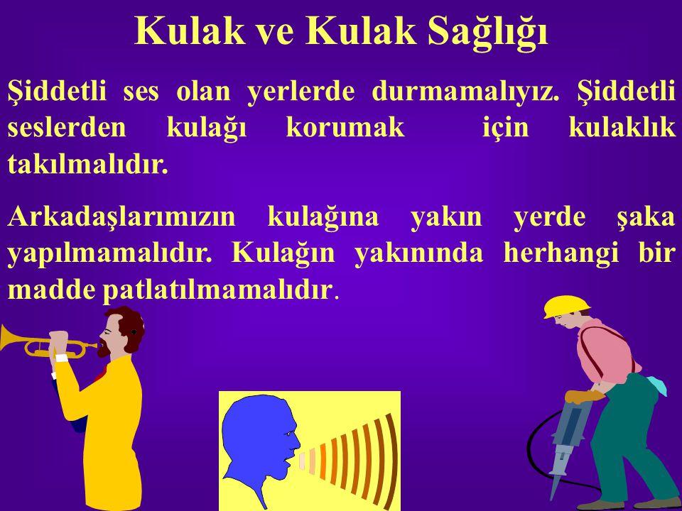 Kulak ve Kulak Sağlığı Şiddetli ses olan yerlerde durmamalıyız. Şiddetli seslerden kulağı korumak için kulaklık takılmalıdır.