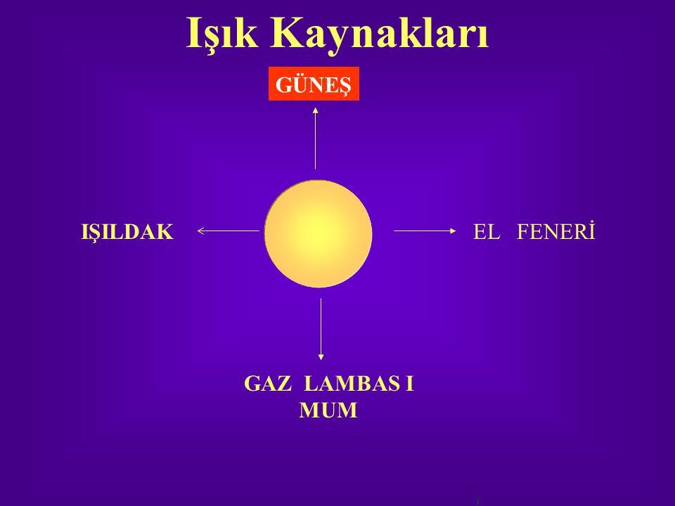 Işık Kaynakları GÜNEŞ IŞILDAK EL FENERİ GAZ LAMBAS I MUM