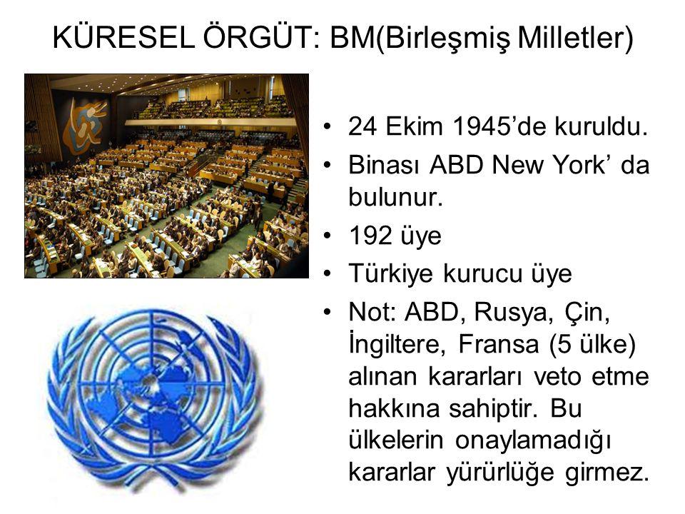 KÜRESEL ÖRGÜT: BM(Birleşmiş Milletler)