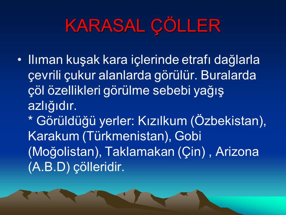 KARASAL ÇÖLLER