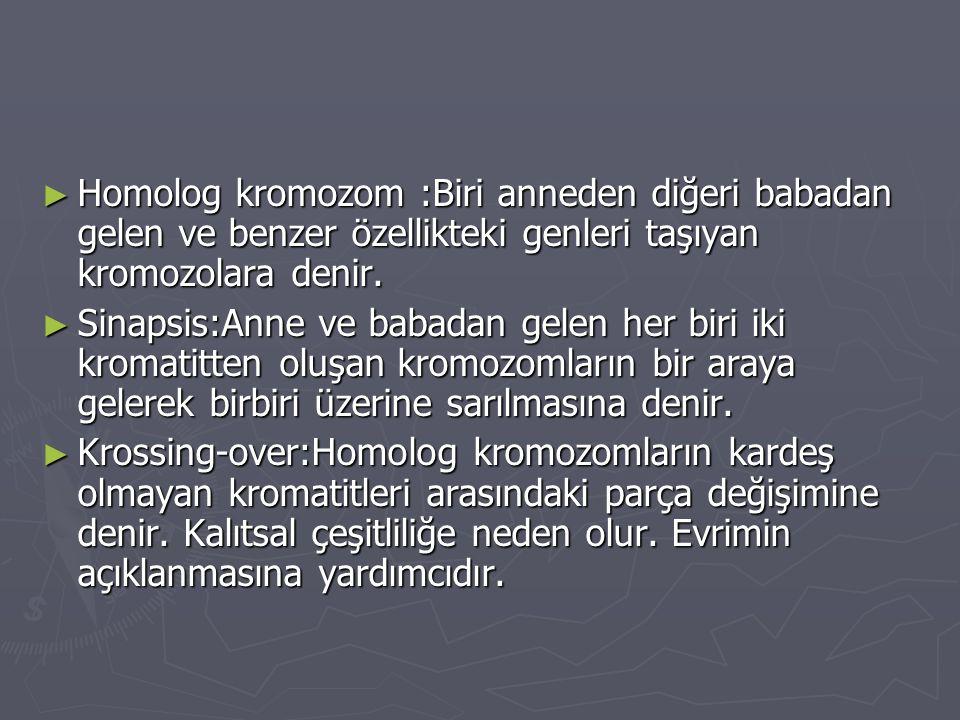 Homolog kromozom :Biri anneden diğeri babadan gelen ve benzer özellikteki genleri taşıyan kromozolara denir.