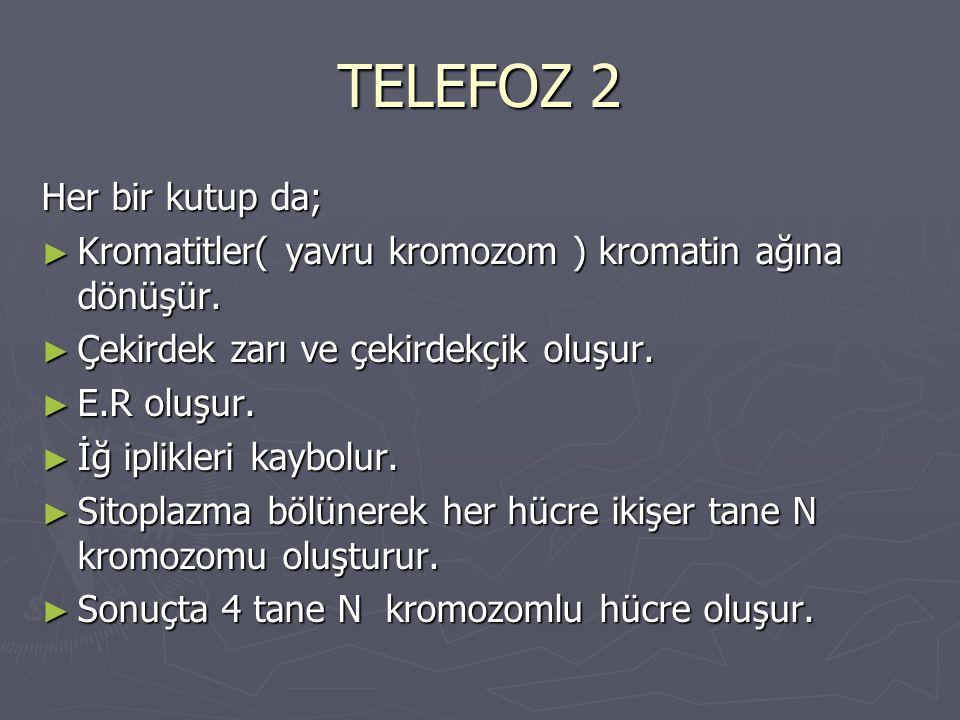TELEFOZ 2 Her bir kutup da;