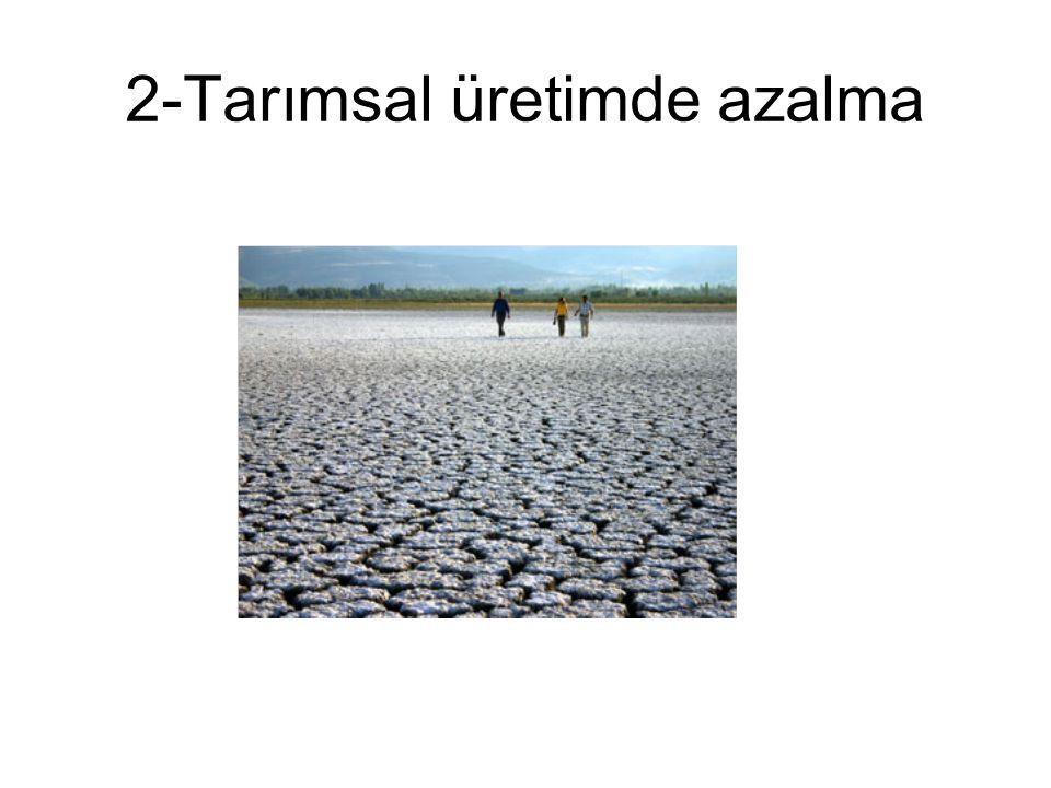 2-Tarımsal üretimde azalma