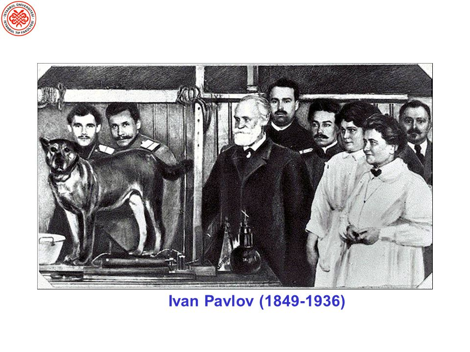 So for instance you're probably all familiar with Pavlov's classical conditioning experiments in which dogs learned to associate a bell with meat and therefore started salivating whenever they heard the bell, even if no meat were present. Here what was being observed was the behavior of salivation, and there was no need or desire to speculate about what was going on inside the dog's head.