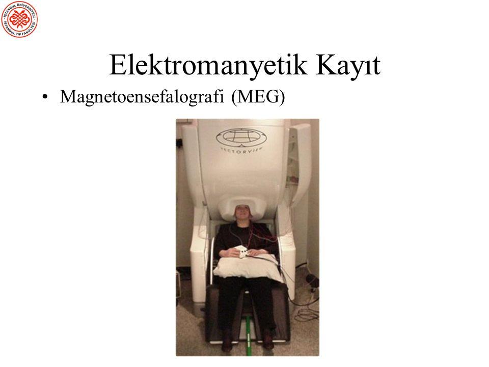 Elektromanyetik Kayıt
