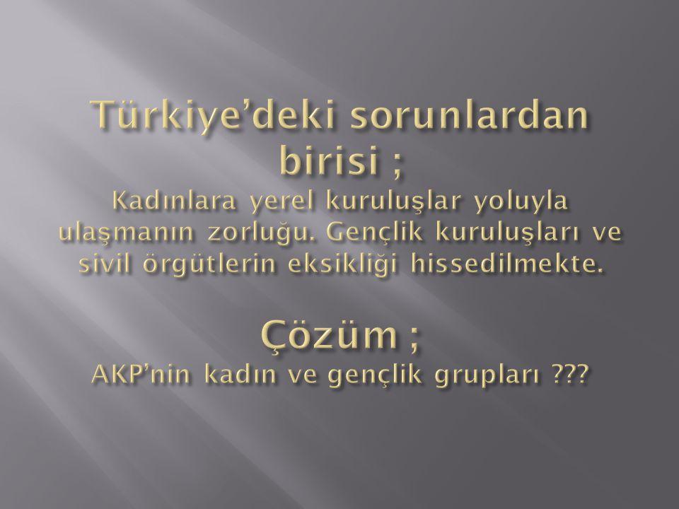 Türkiye'deki sorunlardan birisi ; Kadınlara yerel kuruluşlar yoluyla ulaşmanın zorluğu.