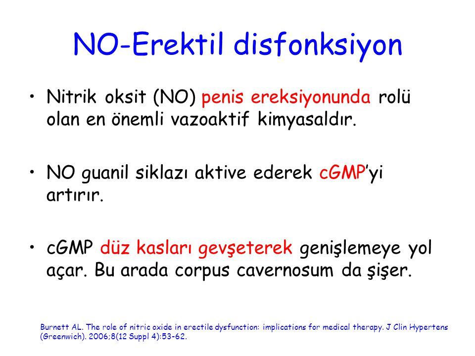 NO-Erektil disfonksiyon