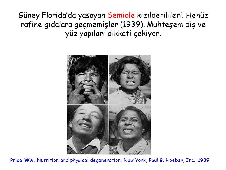 Güney Florida'da yaşayan Semiole kızılderilileri