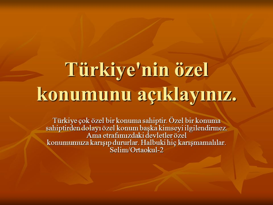 Türkiye nin özel konumunu açıklayınız.