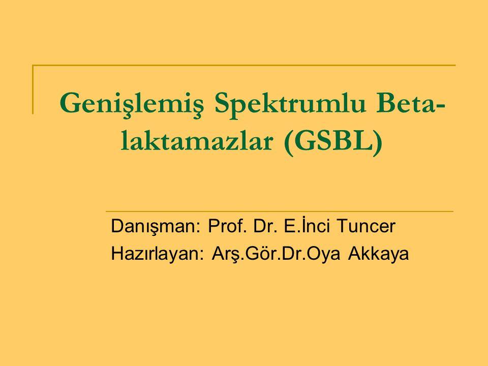 Genişlemiş Spektrumlu Beta-laktamazlar (GSBL)