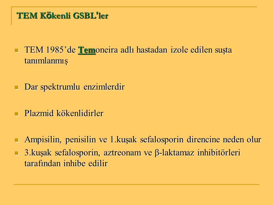 TEM Kökenli GSBL'ler TEM 1985'de Temoneira adlı hastadan izole edilen suşta tanımlanmış. Dar spektrumlu enzimlerdir.