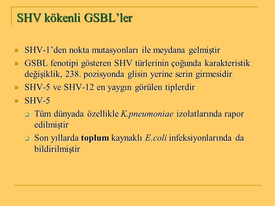 SHV kökenli GSBL'ler SHV-1'den nokta mutasyonları ile meydana gelmiştir.