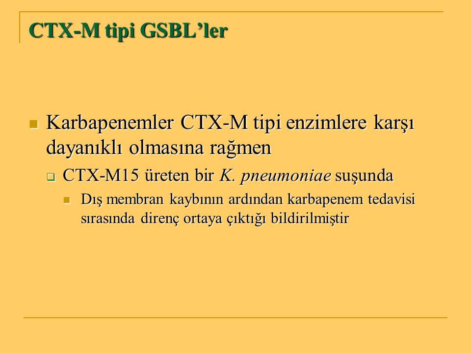 Karbapenemler CTX-M tipi enzimlere karşı dayanıklı olmasına rağmen