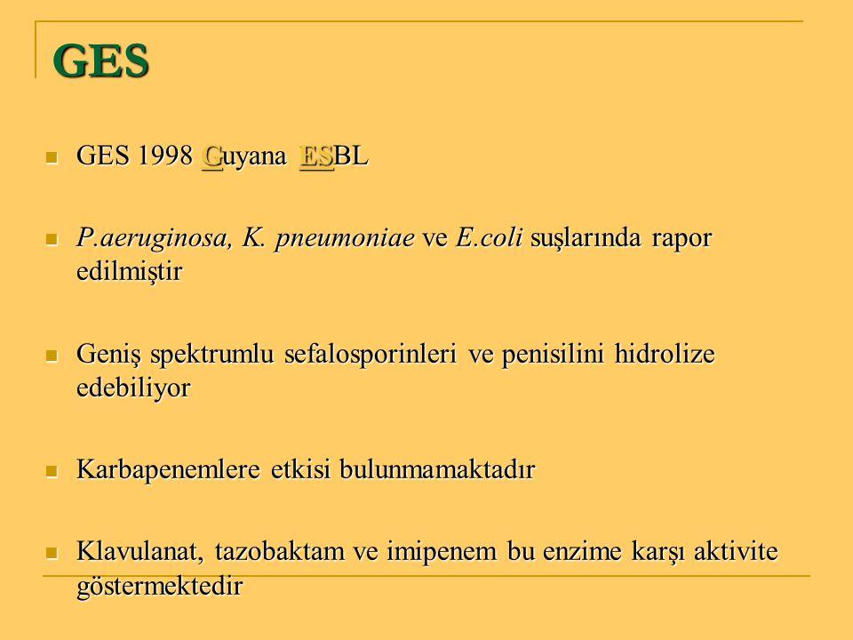 GES GES 1998 Guyana ESBL. P.aeruginosa, K. pneumoniae ve E.coli suşlarında rapor edilmiştir.
