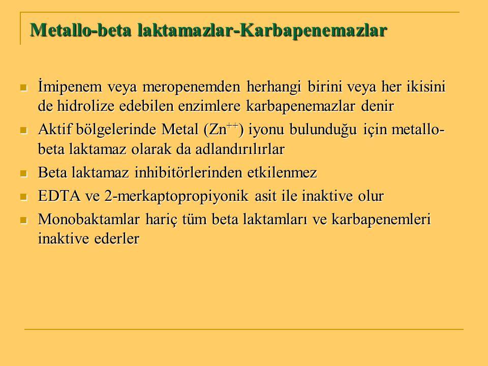 Metallo-beta laktamazlar-Karbapenemazlar