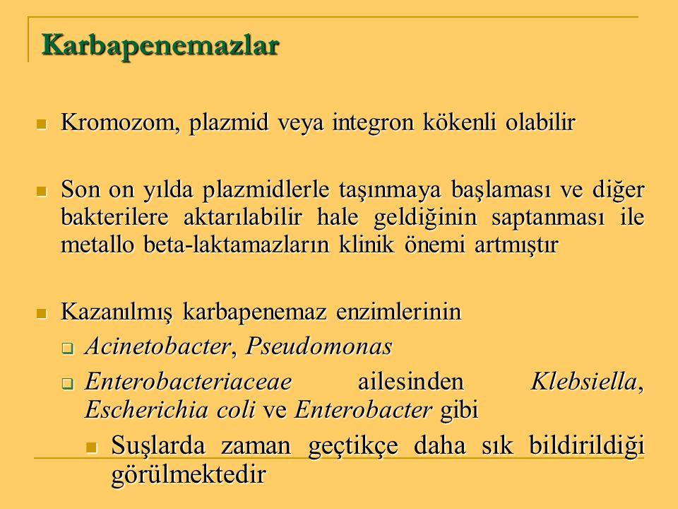 Karbapenemazlar Kromozom, plazmid veya integron kökenli olabilir.