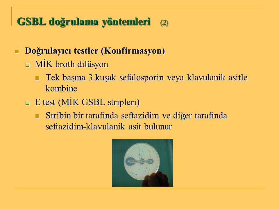 GSBL doğrulama yöntemleri (2)