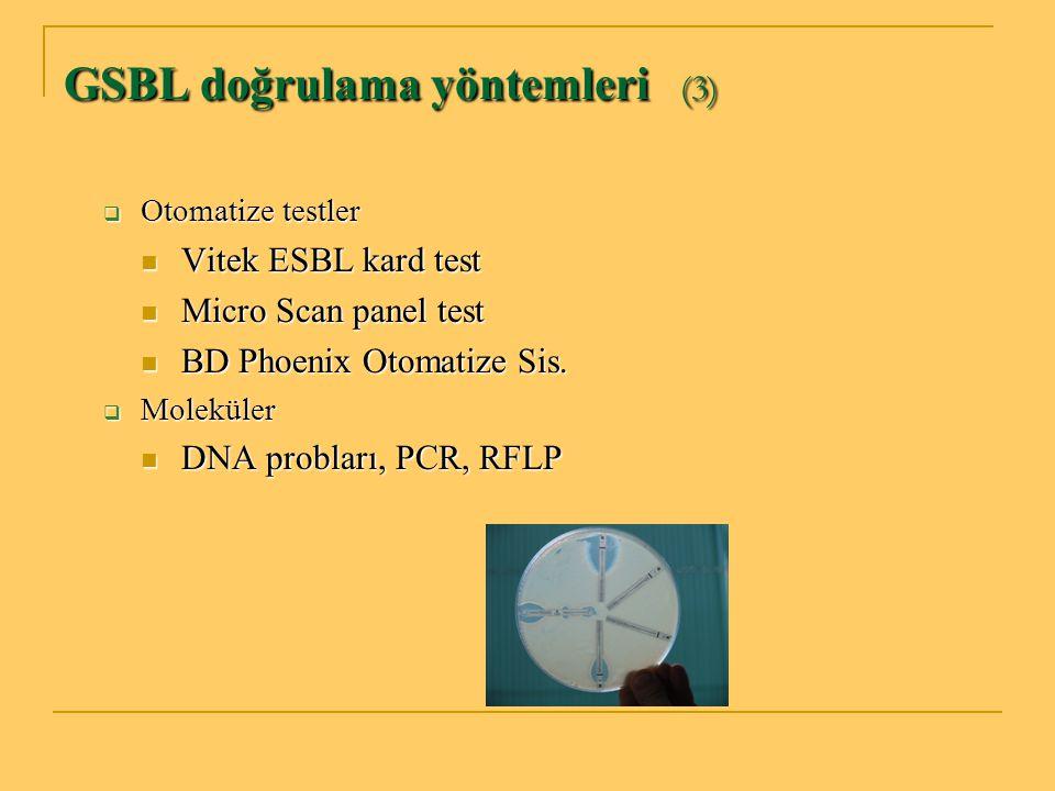 GSBL doğrulama yöntemleri (3)