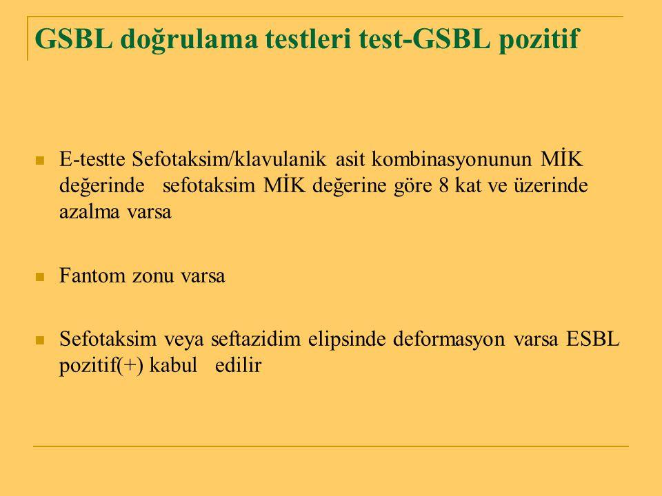 GSBL doğrulama testleri test-GSBL pozitif