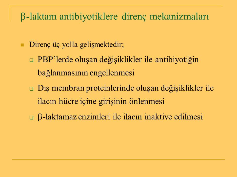 -laktam antibiyotiklere direnç mekanizmaları
