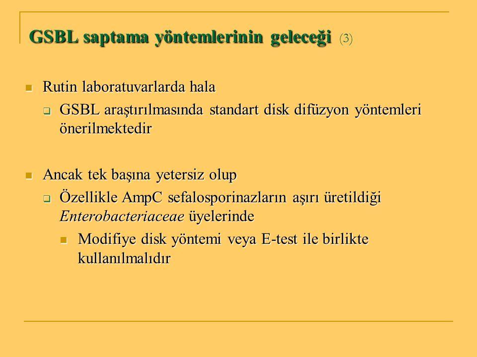 GSBL saptama yöntemlerinin geleceği (3)