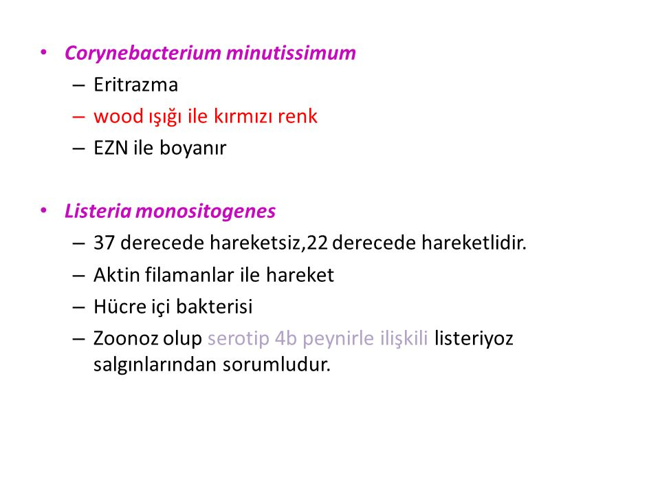Corynebacterium minutissimum