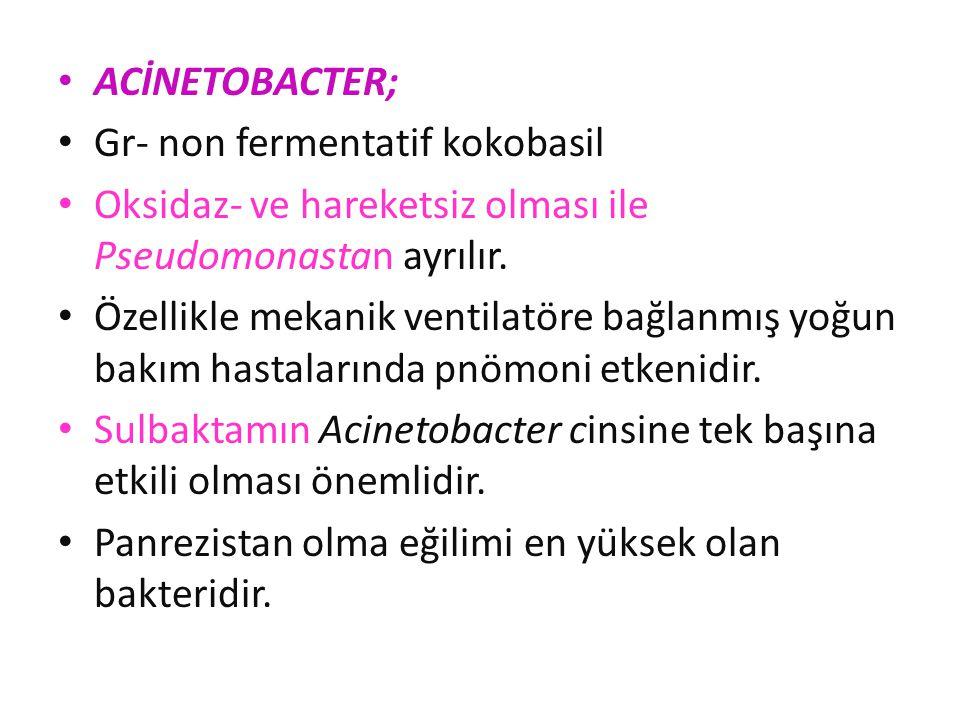 ACİNETOBACTER; Gr- non fermentatif kokobasil. Oksidaz- ve hareketsiz olması ile Pseudomonastan ayrılır.