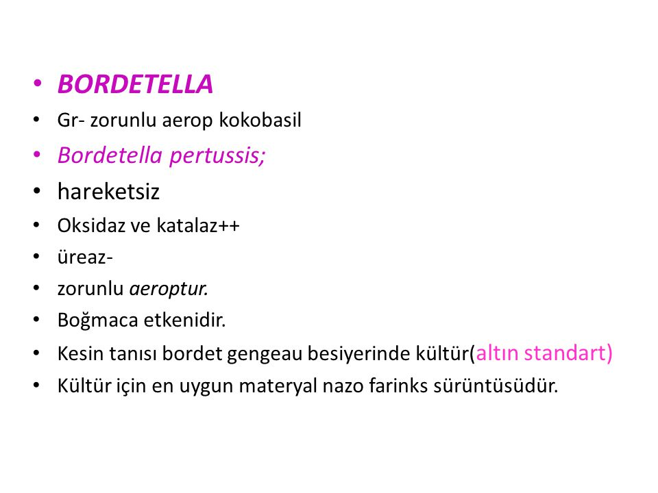 BORDETELLA Bordetella pertussis; hareketsiz