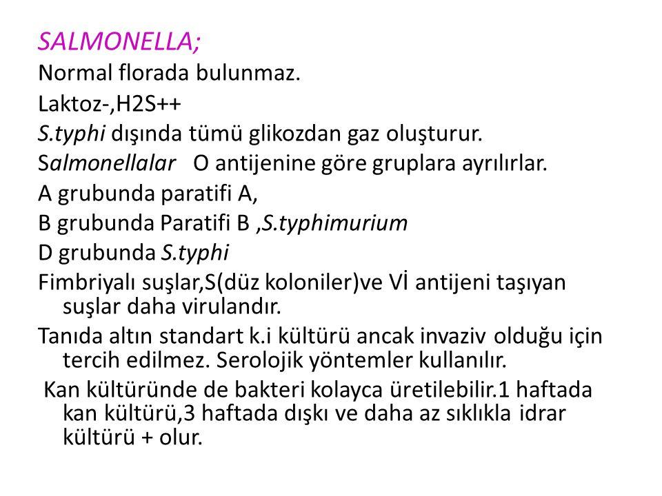 SALMONELLA; Normal florada bulunmaz. Laktoz-,H2S++