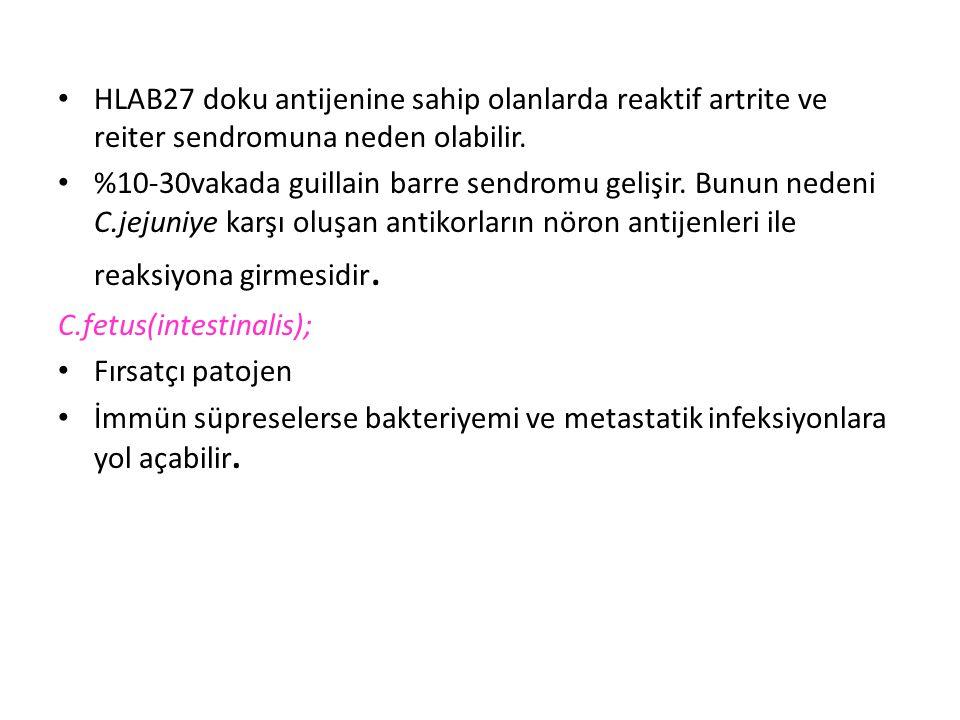 HLAB27 doku antijenine sahip olanlarda reaktif artrite ve reiter sendromuna neden olabilir.