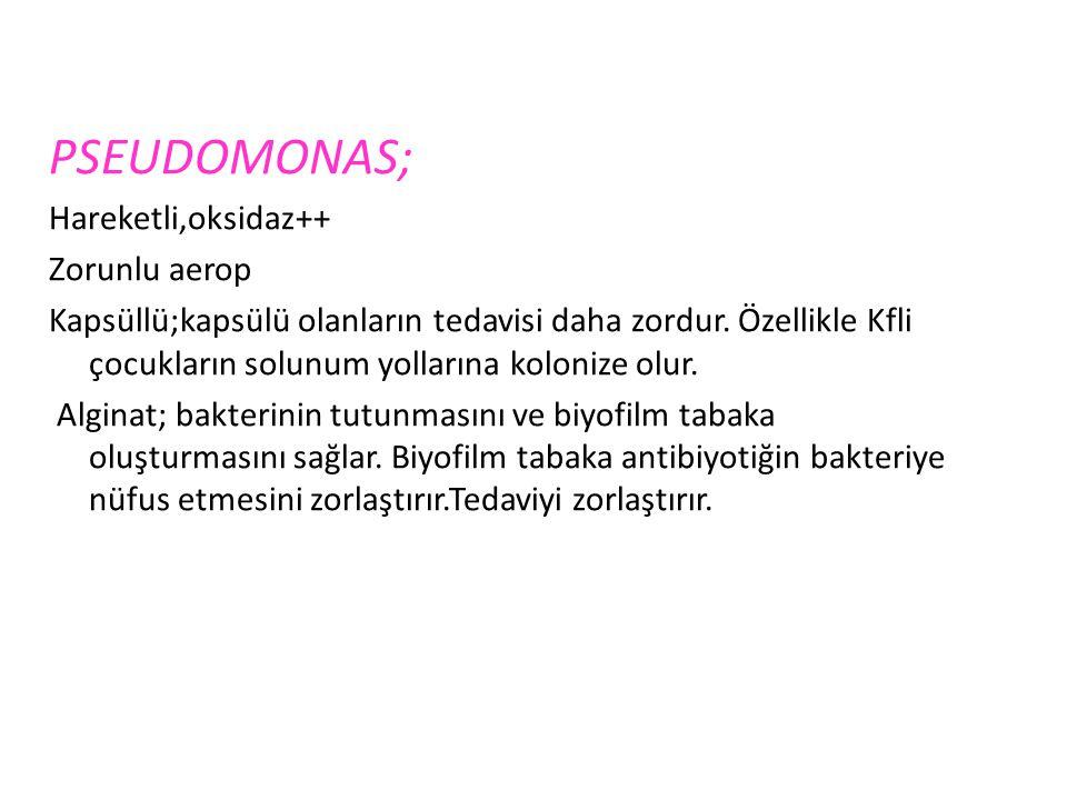 PSEUDOMONAS; Hareketli,oksidaz++ Zorunlu aerop