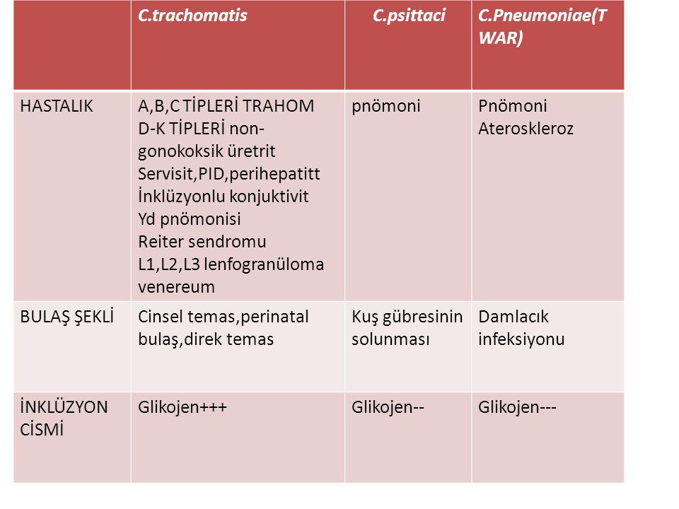 C.trachomatis C.psittaci. C.Pneumoniae(TWAR) HASTALIK. A,B,C TİPLERİ TRAHOM. D-K TİPLERİ non-gonokoksik üretrit.